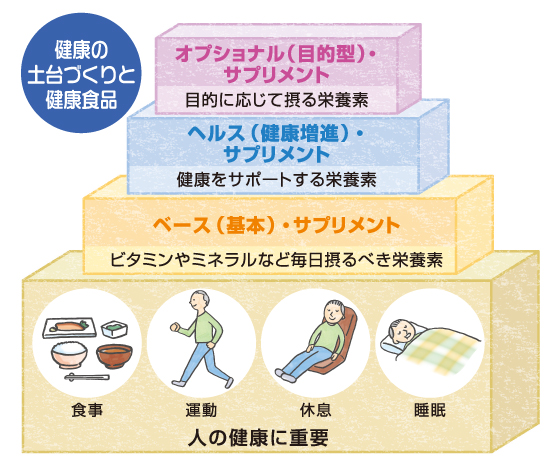 健康の土台づくりと健康食品