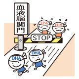 健康学Q&A NO.9 DHAとEPAの違いを教えてください!
