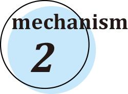 メカニズム2